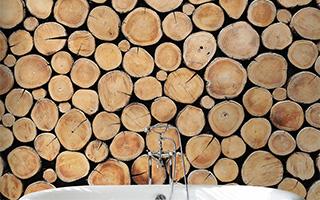 """烂木头也有""""蜕变""""的一天"""