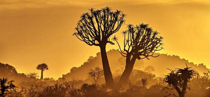 非洲大陆的旅行迷思