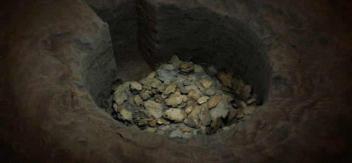 殷墟新发现无字甲骨坑 属商代晚期贵族