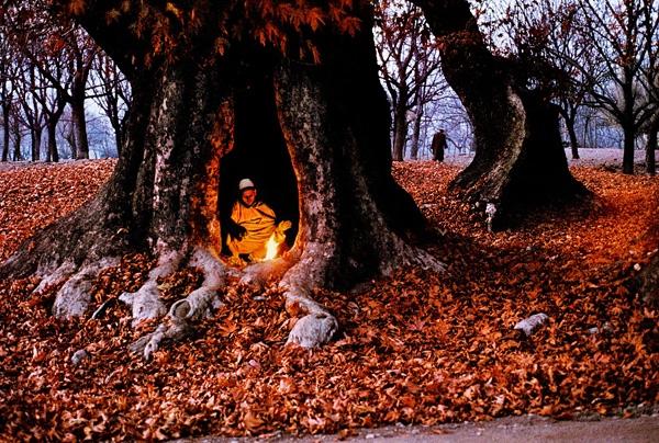 Steve McCurry:克什米尔