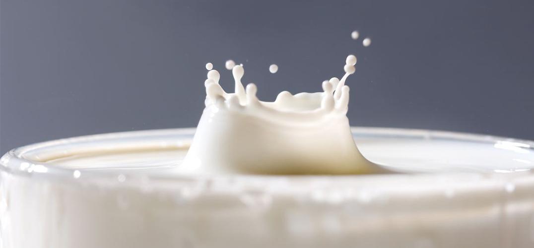全脂牛奶或有助心脏健康