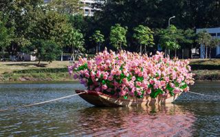 张宇:《草船借莲》
