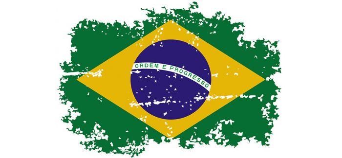 """从巴西博物馆废墟中""""找到""""的教训"""