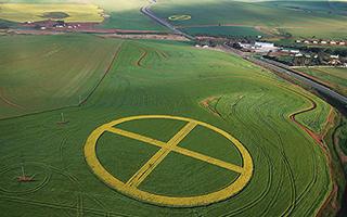 田地里的神秘符号