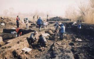 龙虬庄遗址核心区考古新发现