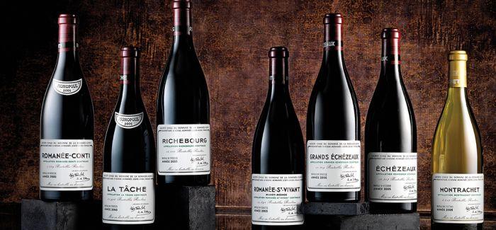 香槟勃艮第葡萄丰收 佳酿可期