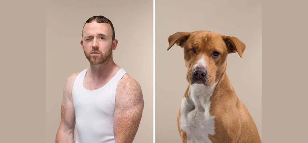 拥有主人范儿的狗狗肖像照