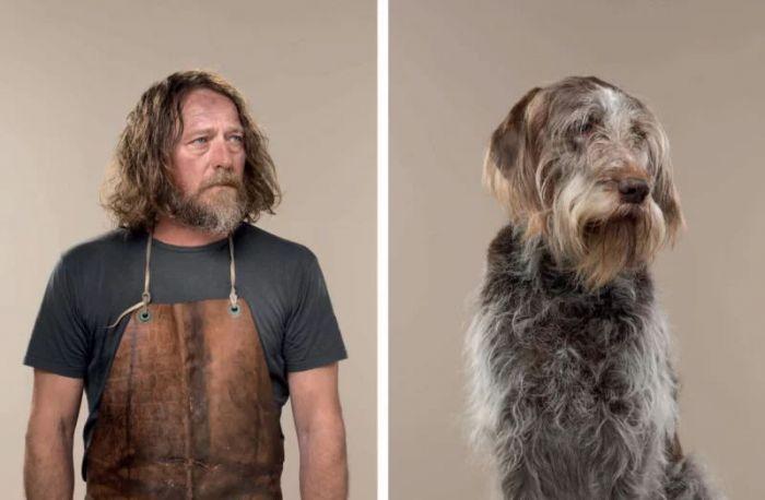 Gerrand Gething:拥有主人范儿的狗狗肖像照
