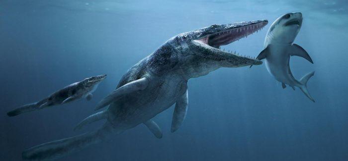 教授破解2.5亿年前生物灭绝之谜