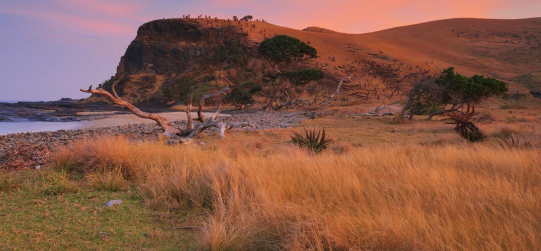 南非 下一站反转季节之旅