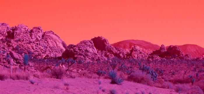 红外线滤镜下的洛杉矶迷情