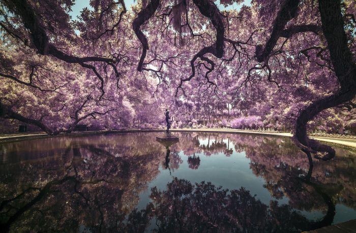 Sony-World-Photo-AwardsToninoVicari-UnitedStatesofAmerica-Open-Landscape-
