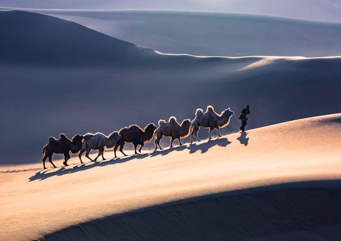 Sony-World-Photo-Awards-PangXiaoZhong-China-Open-Landscape-