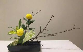 繁华似锦 花卉艺术的表达