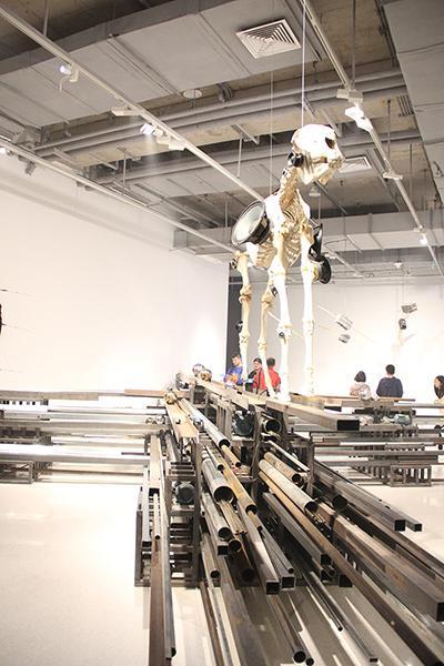 《平行世界》悬挂的动物尸骨