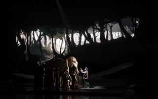 舞台剧《最后一头战象》在上海东方艺术中心首演