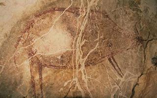 印尼发现4万年前老洞穴壁画
