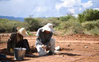 藏于非洲7万年前的地层中的石器