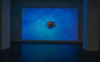 罗曼·西格纳:让人回归物理式的世界