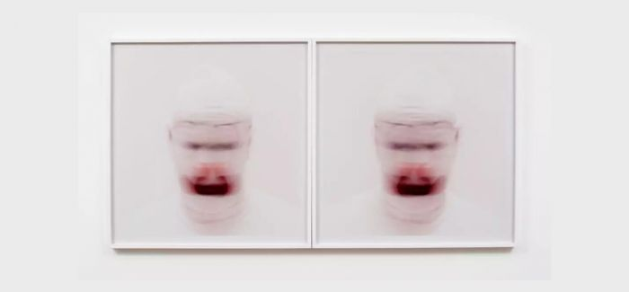 香港推出美国艺术家罗妮·霍恩回顾展