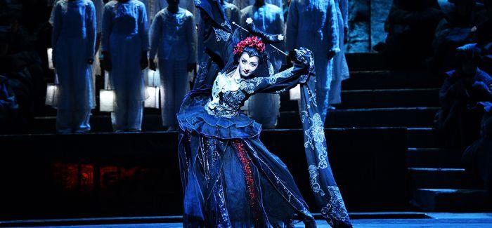我的歌剧不需要你懂