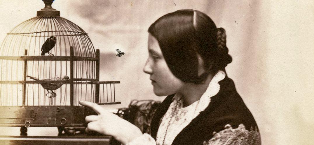 V&A博物馆 呈现英国200年摄影发展史