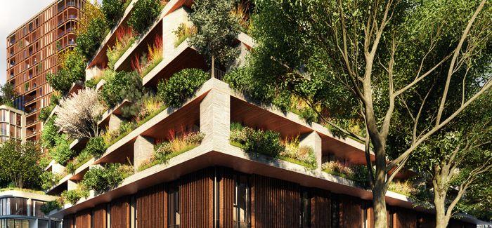 """在城市里建""""森林"""""""