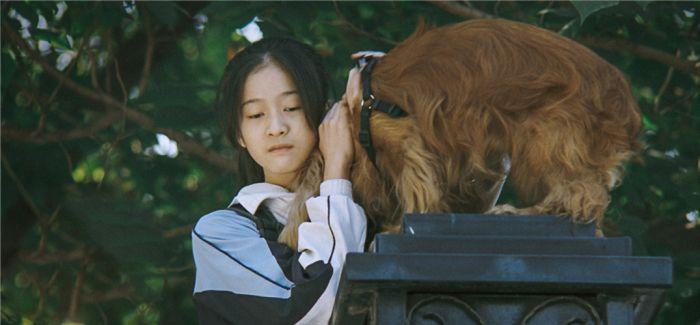 《狗十三》:一场残酷的成人礼