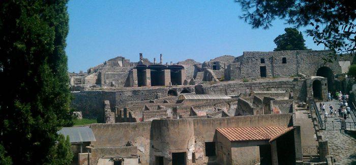 意大利庞贝古城附近出土古代马匹化石