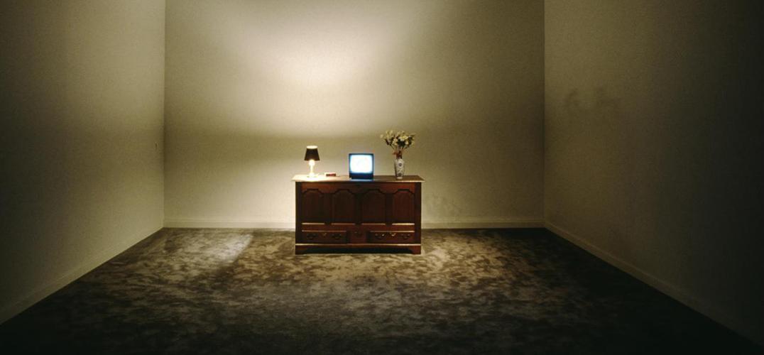 比尔·维奥拉的艺术