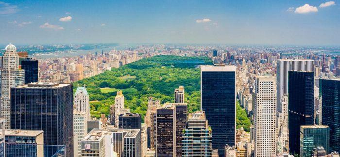 纽约市换下争议性公共雕像
