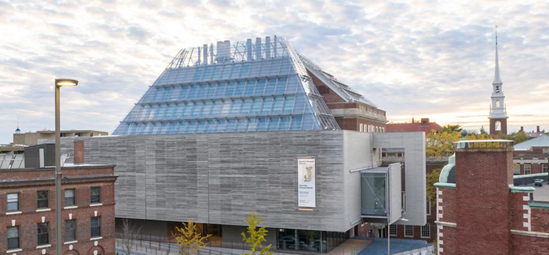 历时六年 翻新哈佛艺术博物馆群