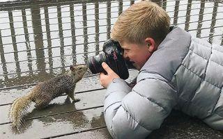 小小年纪拍得一组好照片