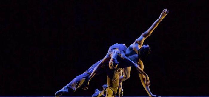 """中国舞协""""顶尖舞者进校园""""  教和育变成艺术"""