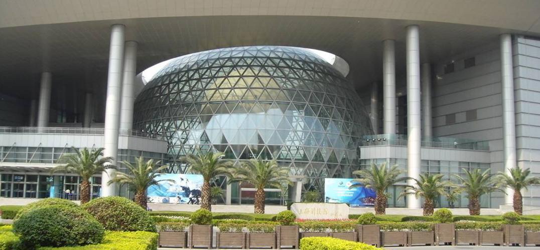 上海科技馆猪年生肖特展 探索关于猪的文化渊源