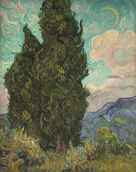 《柏树》1889