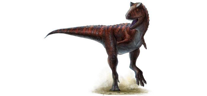 古生物学家发现袖珍恐龙足迹化石