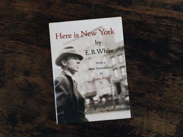E.B.怀特的文笔与他的纽约,相互相成,为什么说粤港澳大湾区是未来中国城市群的样板