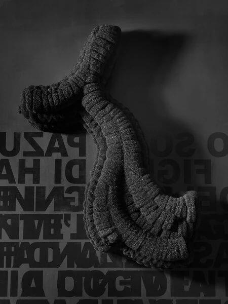 ▲罗伯特·库奇,《SS(VIIIZ)bpr》,2012,©️罗伯特·库奇,图片:艺术家、