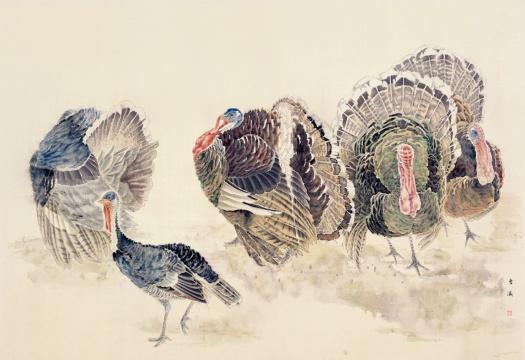 《吐绶鸡》 112cm×164cm 1993年 绢本设色