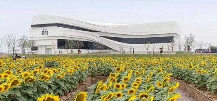 银川当代美术馆迎来开年首展 与公共教育并行