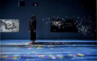 """流量型""""网红展"""":展览的未来?"""