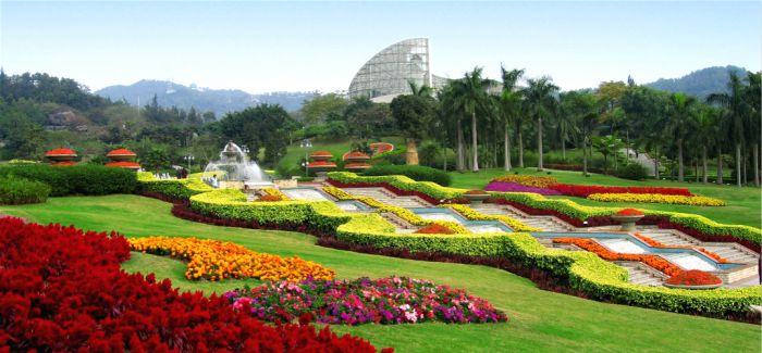 广州花园49处赏花点首度披露