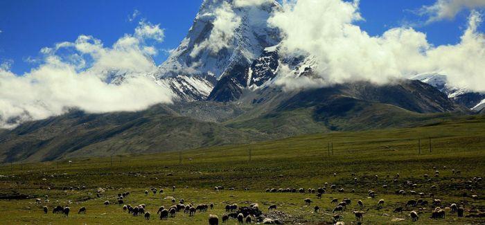 青藏高原发现16万年前丹尼索瓦人化石