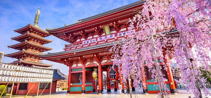 """日本流行色协会公布""""令和""""代表色"""
