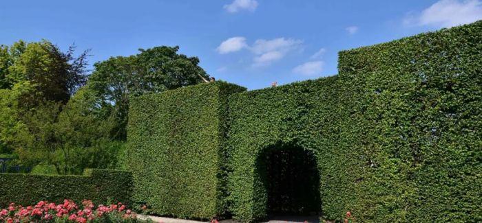 踏入这7座欧洲城堡花园 享受别致景观