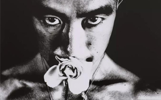 细江英公 三岛由纪夫 《蔷薇刑》 中国首展来了!