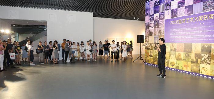 宝龙艺术大奖(PAA)来了 今年第三届