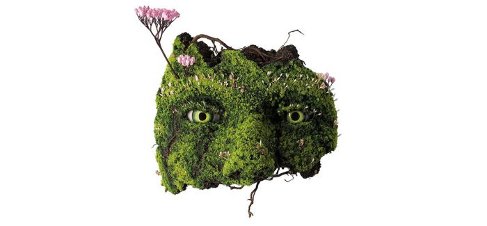 """""""湮灭""""之境的植物人生"""