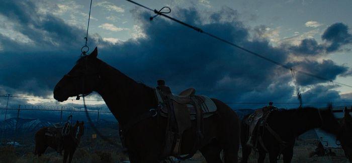 """人与马 两头""""困兽"""""""